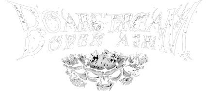 Boarstream Open AiR